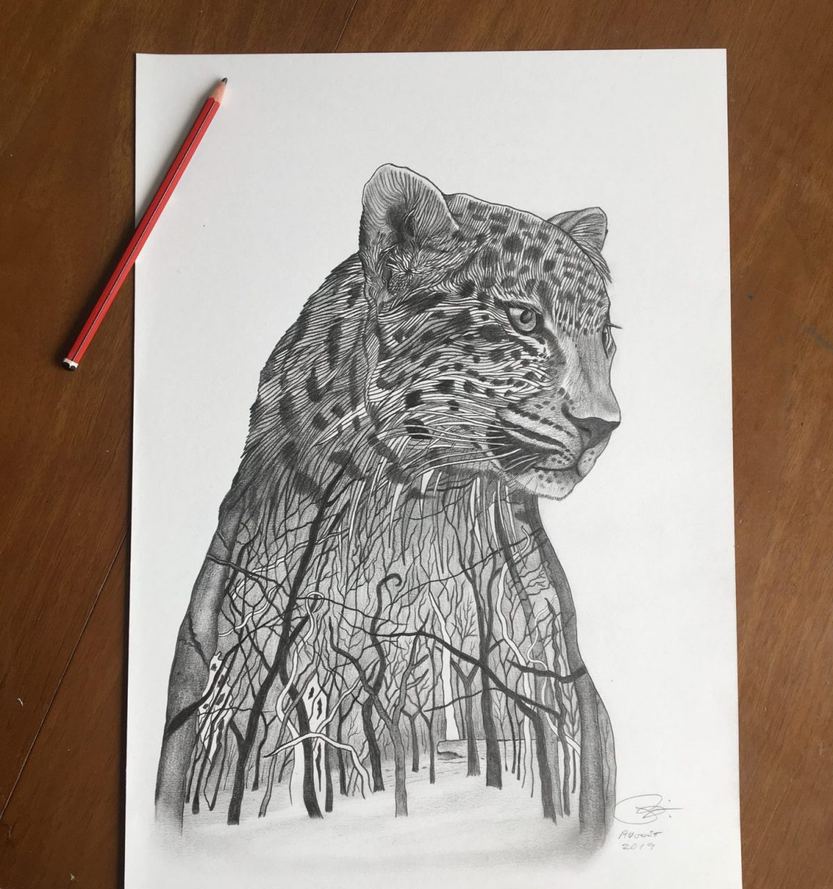 Amur Leopard drawing for Sketch for Survival 2019