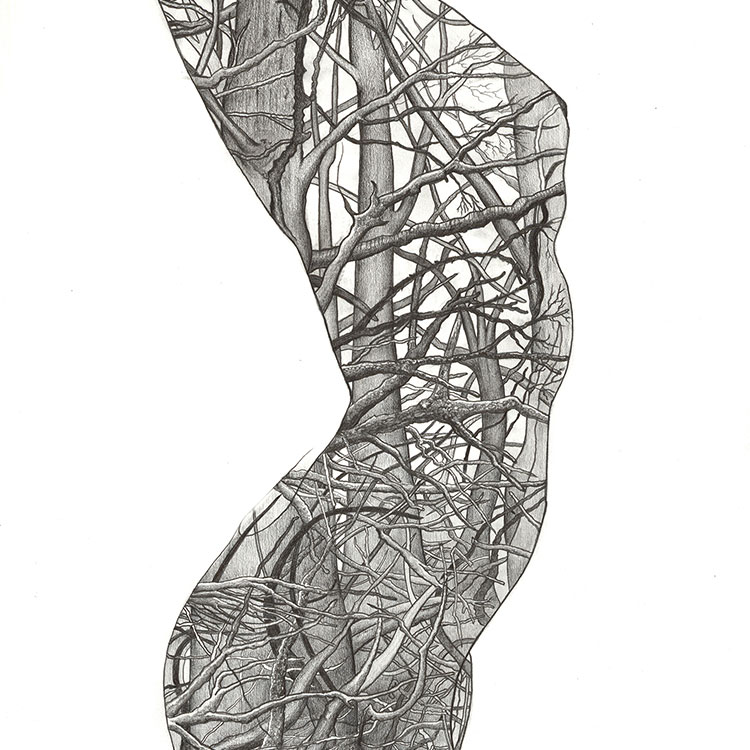 Intricate drawings by London based artist Paul Kingsley Squire