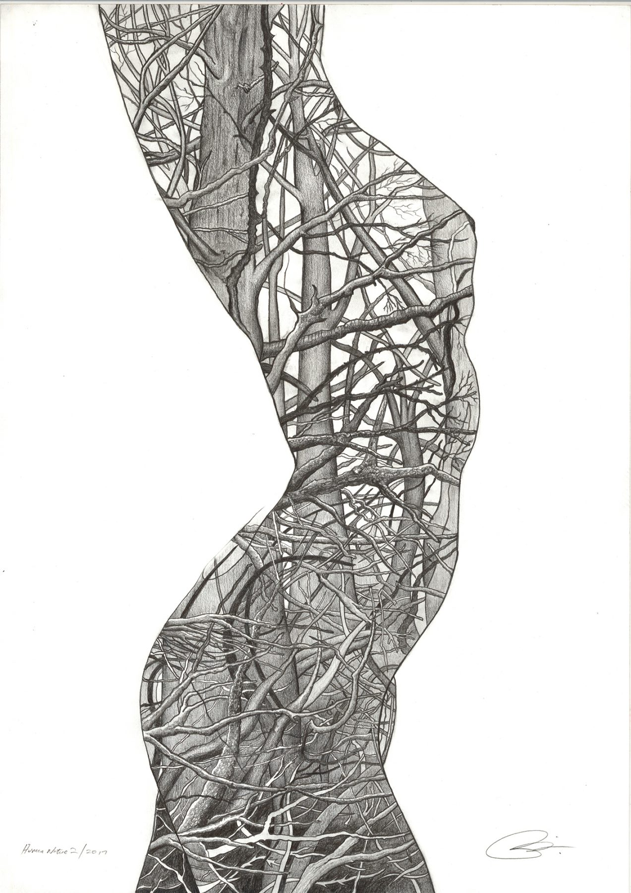 Human Nature 2 | Pencil on 200gsm paper | 42 x 59.4 cm | SOLD