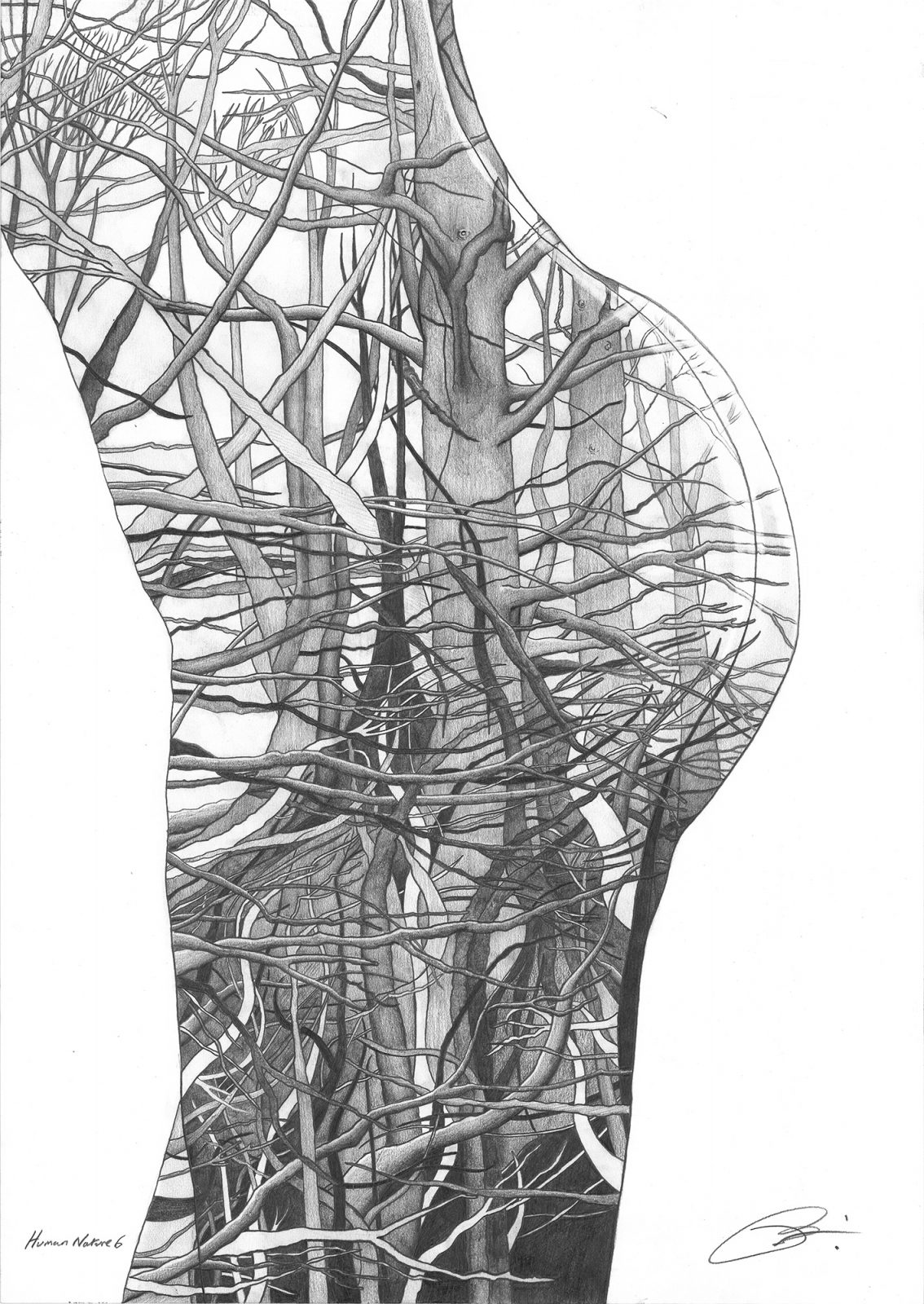 Human Nature 6 | Pencil on 200gsm paper | 42 x 59.4 cm
