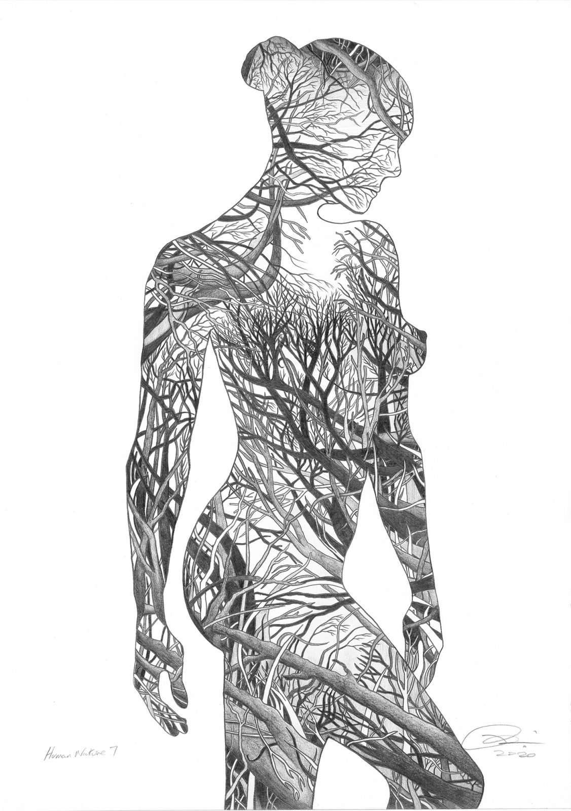 Human Nature 7 - drawing by Paul Kingsley Squire