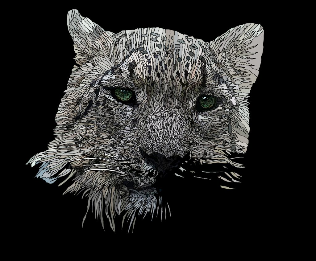 Gimme Shelter - Anthropomorphic art featuring a Snow Leopard