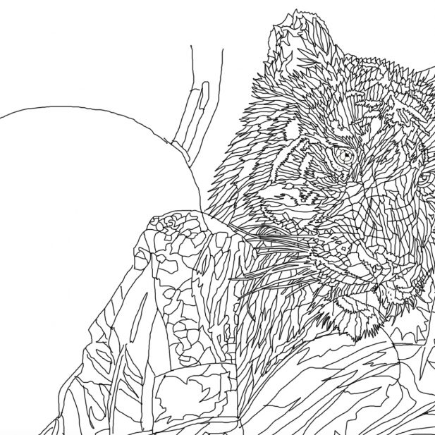 Top of the Food Chain - work in progress